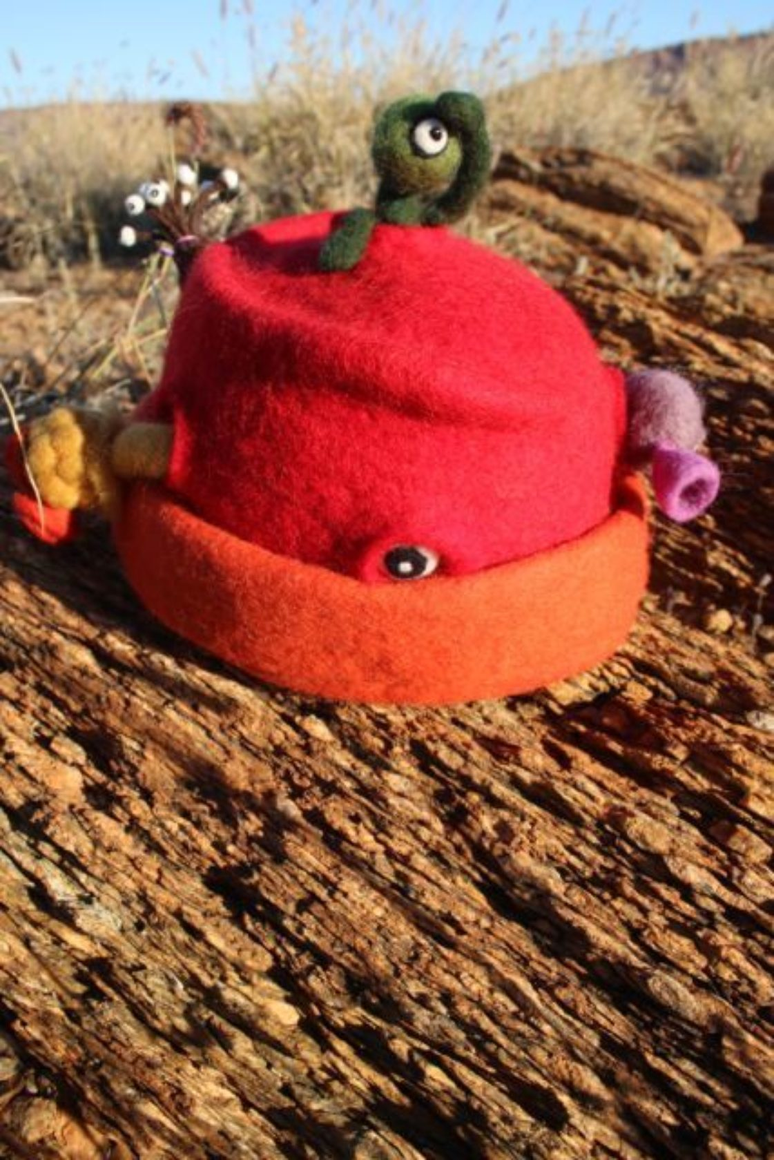 7164d3346b2 Ashfords Prize for Best Hand-felted Beanie Winner  Is Anybody Out There –  Andrea Veihelmann